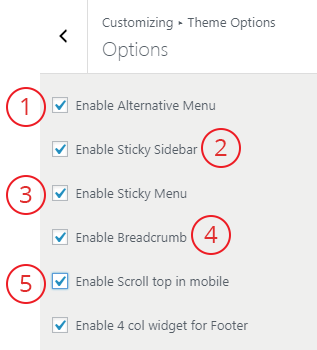 theme options 1